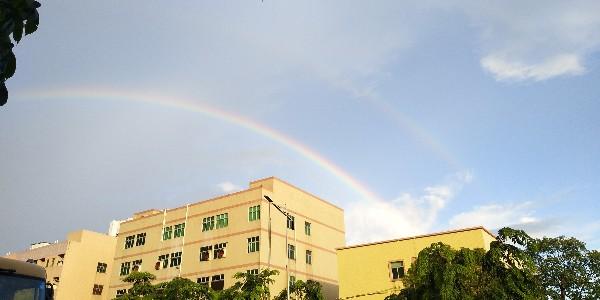 背胶魔术贴厂家-风雨过后总会出现彩虹!